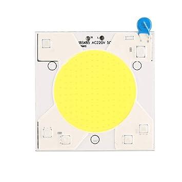 Heaviesk 220V 50W Matriz de LED para proyectores Granos COB Chip ...