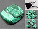 Medium Tumbled Malachite, Card, Velvet Bag: Stone of Transformation Metaphysical