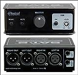 Radial SAT-2 Stereo Audio Attenuator Monitor