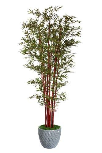 Laura Ashley VHX105212 98-Inch Harvest Bamboo Tree in 16-Inch Fiber Stone Planter