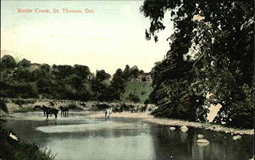 Kettle Creek St. Thomas, Ontario Canada Original Vintage Postcard