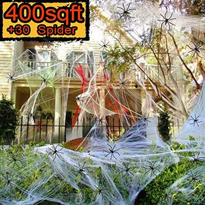 Great spider web