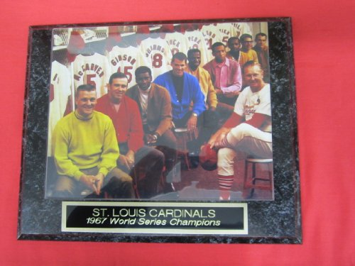 St Louis Cardinals World Series Photo Cardinals World