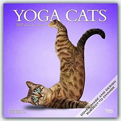 Yoga Cats 2017 Square