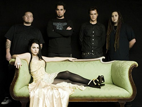(Amy Lee & Evanescence Promos 24X36 New Printed Poster Rare #TNW331939)