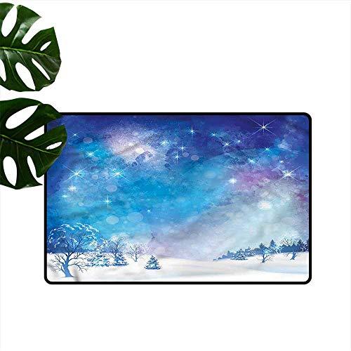 (Entrance Door mat Night Sky Christmas Snow Winter Durable W30 xL39)