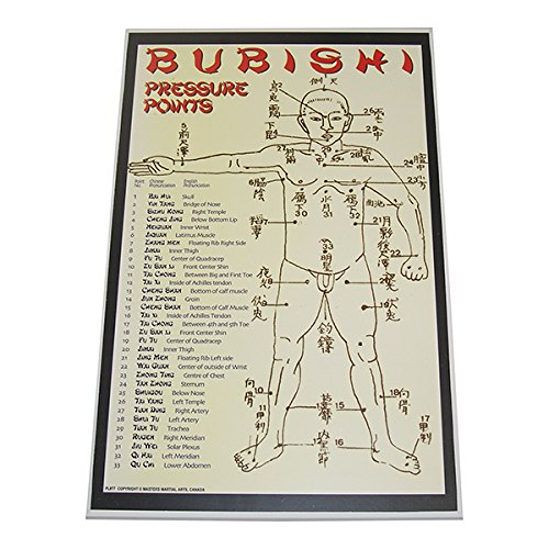 Bubishi Chinese Pressure Points dim mak chinese kung fu martial art Display Wall Plaque 11x17