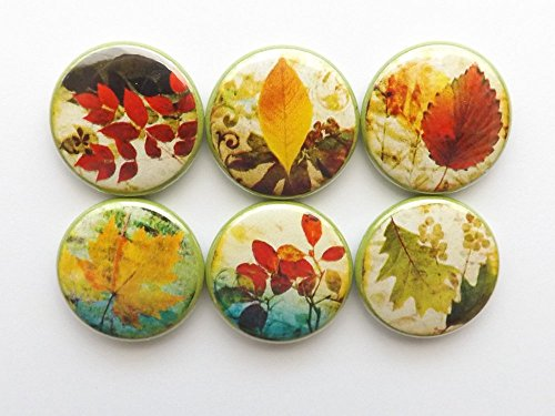 Autumn Leaves Magnets - Fall Leaves refrigerator 1 inch magnets Thanksgiving home decor hostess gifts autumn