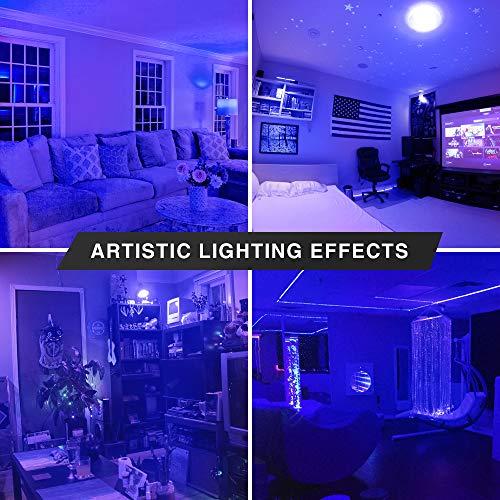 2 Pack BlueX LED A19 Light Bulb - 9W (60Watt Equivalent) - E26 Base Blue LED Blue Bulb, Party Decoration, Porch, Home Lighting, Holiday Lighting, Decorative Illumination (Blue)