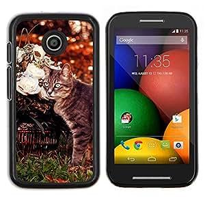 Curl Americano Shorthair gato Manx- Metal de aluminio y de plástico duro Caja del teléfono - Negro - Motorola Moto E / XT1021 / XT1022