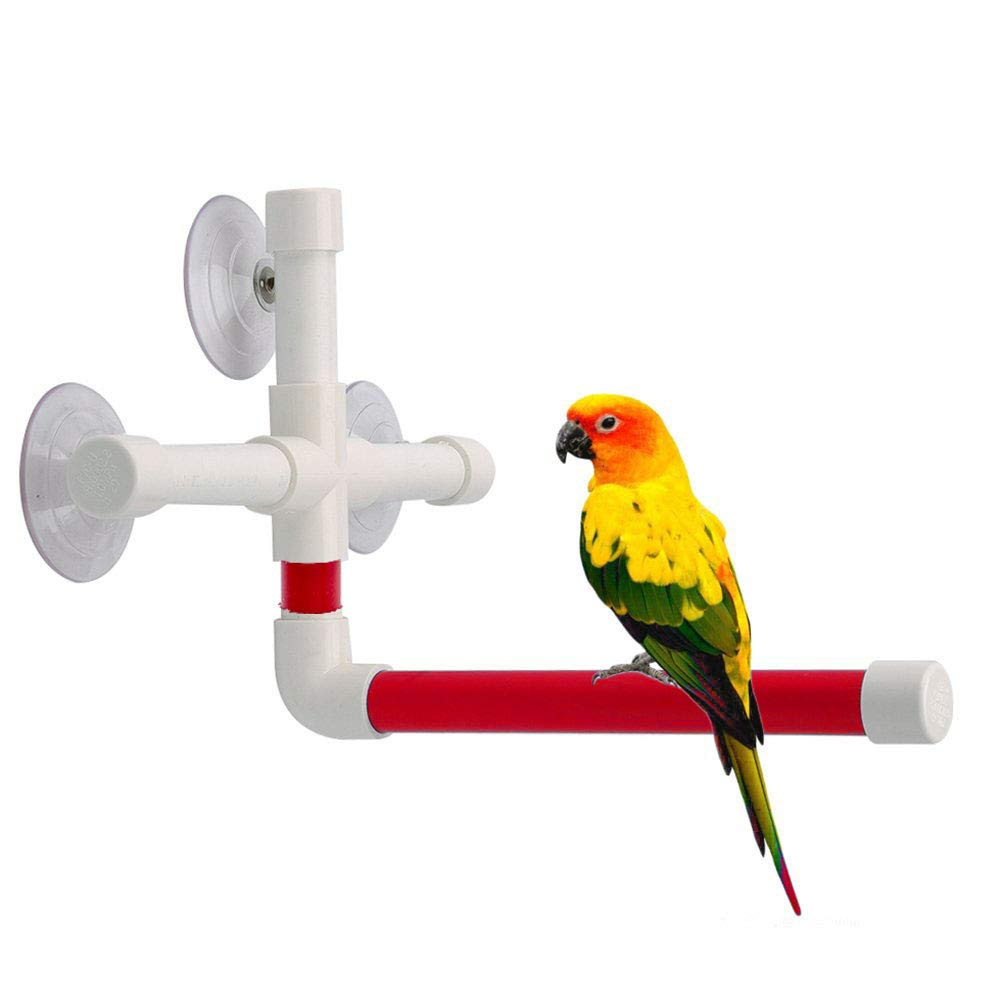 UTOPIAY Red Bird Parrot Bath Perches Standing Platform Rack Suction Cup Window Shower Bird Bath Toys Frame,2pcs by UTOPIAY