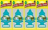 Little Trees Rainforest Mist Air Freshener, (Pack of 24)