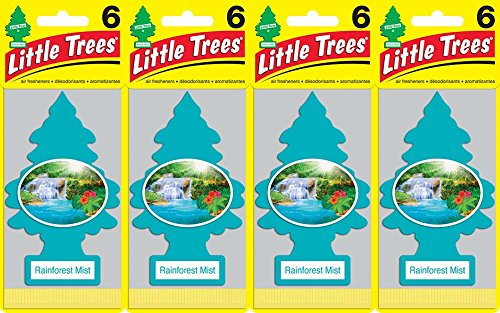 Little Trees Rainforest Mist Air Freshener, (Pack of 24) (Rain Mist)