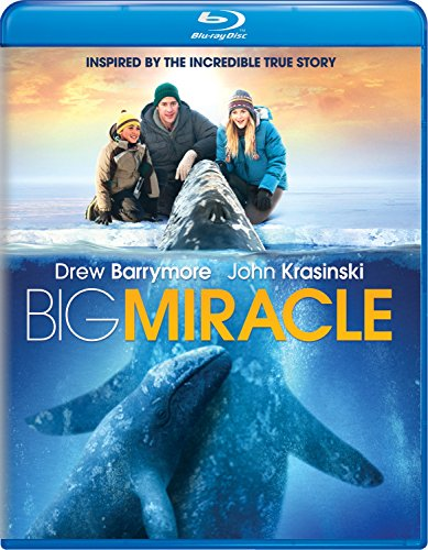 Blu-ray : Big Miracle (Blu-ray)