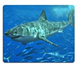 Animal Wildlife Great White Shark Ocean Predator Underwater Sea Jaws Mouse Pads Customized Made to Order Support Ready 9 7/8 Inch (250mm) X 7 7/8 Inch (200mm) X 1/16 Inch (2mm) High Quality Eco Friendly Cloth with Neoprene Rubber Lux Mouse Pad Desktop Mousepad Laptop Mousepads Comfortable Computer Mouse Mat Cute Gaming Mouse_pad