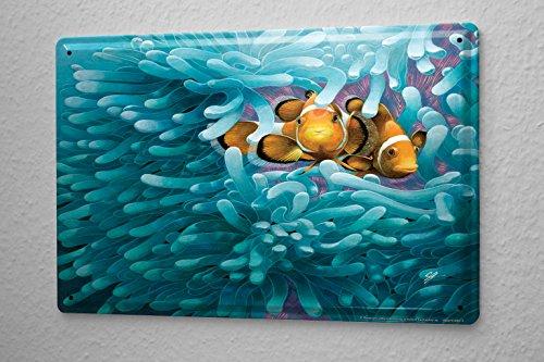 Fun Tin Sign Wall Decoration Anemone clownfish Metal Plate (Anemone Clownfish)