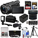 Sony Handycam FDR-AX53 Wi-Fi 4K Ultra HD Video Camera Camcorder + 64GB Card + Battery + Case + Tripod + LED Light + Mic + Filters + Fisheye Lens Kit