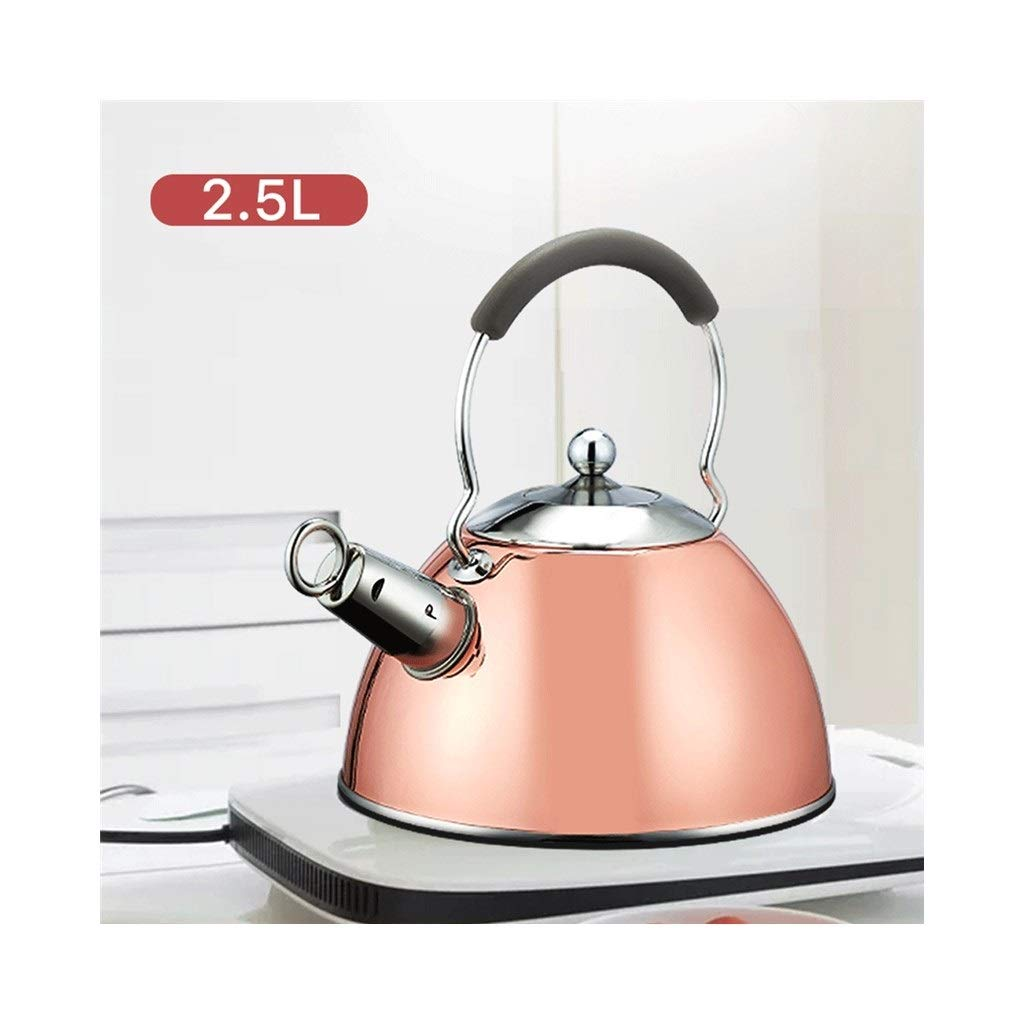 Gas Stove with Kettle,304 Stainless Steel Whistling Kettle, Gas Stove Induction Cooker Universal 3L Large Capacity (Color : Copper Gold)