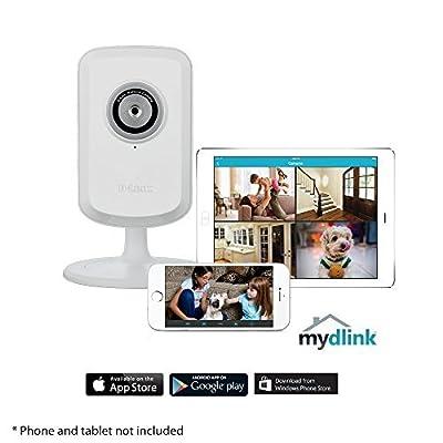 D-Link Indoor/Outdoor Camera