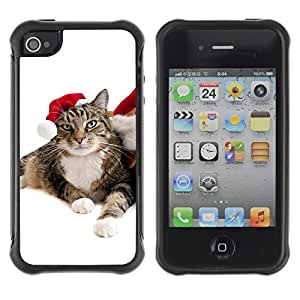 LASTONE PHONE CASE / Suave Silicona Caso Carcasa de Caucho Funda para Apple Iphone 4 / 4S / Cat Christmas Elf Mongrel Blue Eyes Photo
