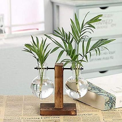 Amazon Com Motonupic Vintage Style Glass Desktop Plant
