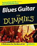 Blues Guitar for Dummies, Jon Chappell, 0470049200