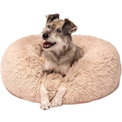 (Friends Forever Premium Donut Bolster Orthopedic Dog Bed for Puppy to Medium Dogs & Cat, Medium Tan)