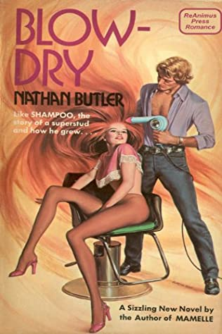 book cover of Blow-dry