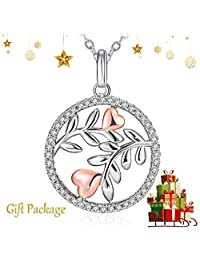 J.Rosée Silver Necklace, Gifts for Women 925 Sterling Silver 3A Cubic Zirconia Flower Pendant Necklace Fine Jewelry Secret Garden