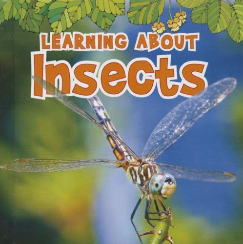 Download Learning About Insects (The Natural World) ebook