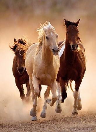 CLEMENTONI RUNNING Horses Jigsaw