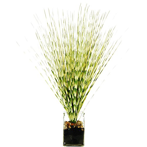 LCG Florals Zebra Grass in a Glass Jar with River Rocks, for sale  Delivered anywhere in USA