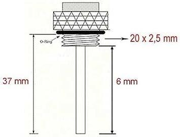 Öltemperaturmesser Ölthermometer Gewinde 20 X 2 5 Mm Nadell 6 Mm Länge 37 Mm Auto