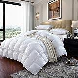 Best Goose Down Comforters - LESNNCIER Luxurious Lightweight Goose Down Comforter Twin Size Review