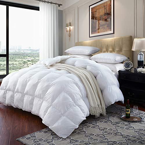 LESNNCIER Luxurious Lightweight Goose Down Comforter Queen Size Duvet Insert 1200 Thread Count 750+ Fill Power 100% Cotton Shell Hypo-allergenic(Queen, White)