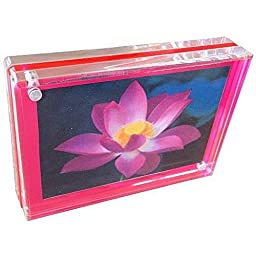 Acrylic TRIPLE MAGNET FRAME in NEON PINK by Canetti - 4x6