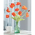 California-Poppies-Silk-Accent-Flame