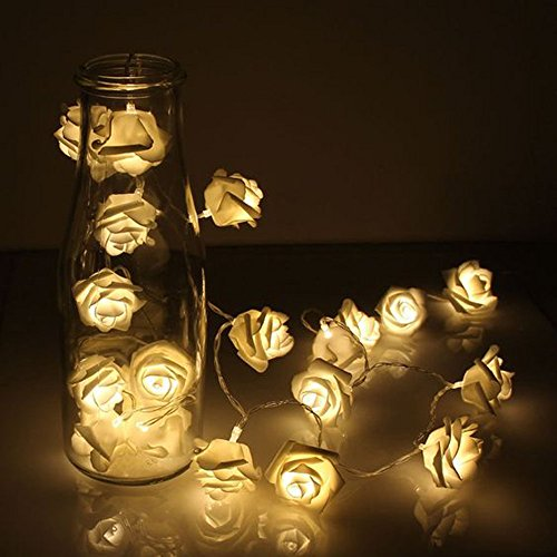 Shimmer Forest 35LED Warm White Rose Flower Fairy String Lights 16.4 Feet Clear Cable USB Powered for Valentine's, Wedding, Bedroom, Indoor Decoration