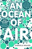 an ocean of air - An Ocean of Air: Why the Wind Blows and Other Mysteries of the Atmosphere by Walker, Gabrielle (2008) Paperback