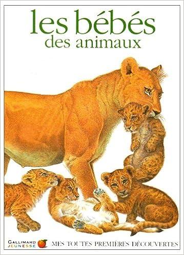 Livres gratuits en ligne Les Bébés des animaux : titre provisoire pdf