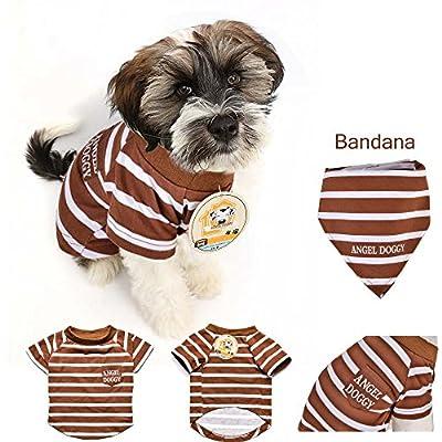 AngelDoggy.INC Dog T-Shirt- Small & Medium Dogs Apparel- Trendy Dogs' Clothes