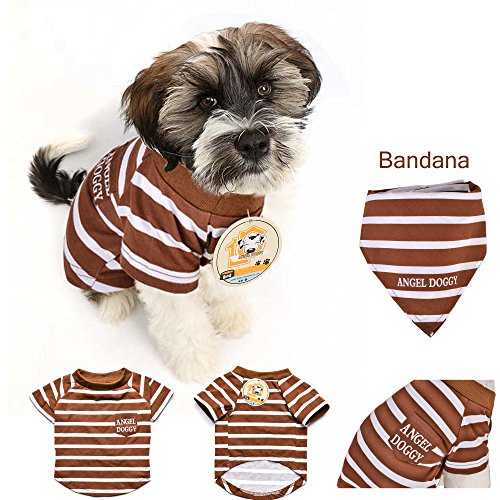 AngelDoggy.INC Dog T-Shirt- Small & Medium Dogs Apparel- Trendy Dogs' Clothes (L)