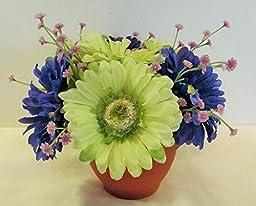 Green and Purple Gerbera Daisy Arrangement