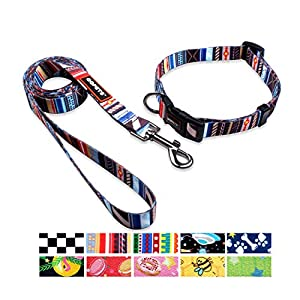 QQPETS Dog Collar Leash Set Adjustable Personalized Basic Collars Leash with Handle for Puppy Medium or Large Dogs… Click on image for further info.