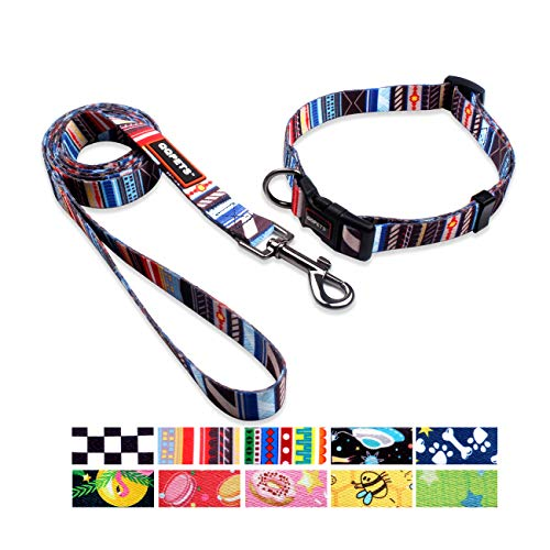 QQPETS Dog Collar Leash Set Adjustable Personalized Basic Collars Leash with Handle for Puppy Medium or Large Dogs Training Walking