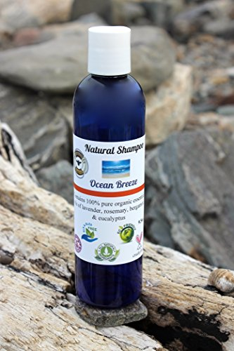 All Natural Organic Eco-Freindly Shampoo OCEAN BREEZE 9.5oz by He Be G-Bees