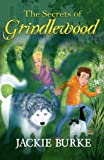 img - for The Secrets of Grindlewood (Volume 1) book / textbook / text book