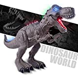 NV Light-up Dinosaur T-rex Toys Boys Kids,Walking & Roaring Battery Operated Dinosaur (Colors May Vary)