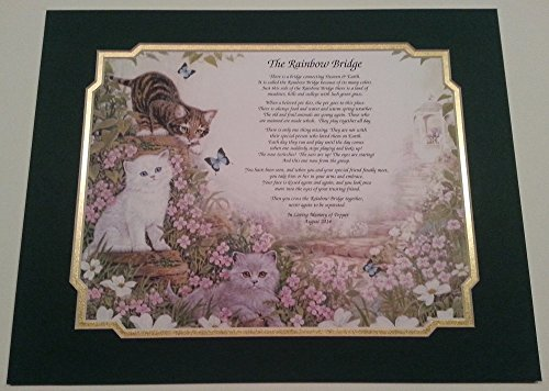 Rainbow Bridge Border (Rainbow Bridge Pet Memorial Poem For Loss of Your Beloved Cat w/ Forest Green & Frosted Gold Dual Mat by Names To Remember)