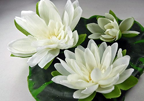 Dexon Power Floating Water Lily with Water Drops Cream 9 Inch, 3 Flowers